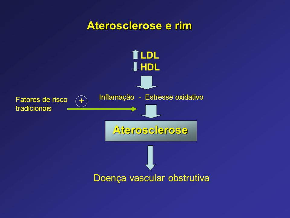 Aterosclerose LDL HDL Doença vascular obstrutiva Inflamação - Estresse oxidativo + Fatores de risco tradicionais Aterosclerose e rim