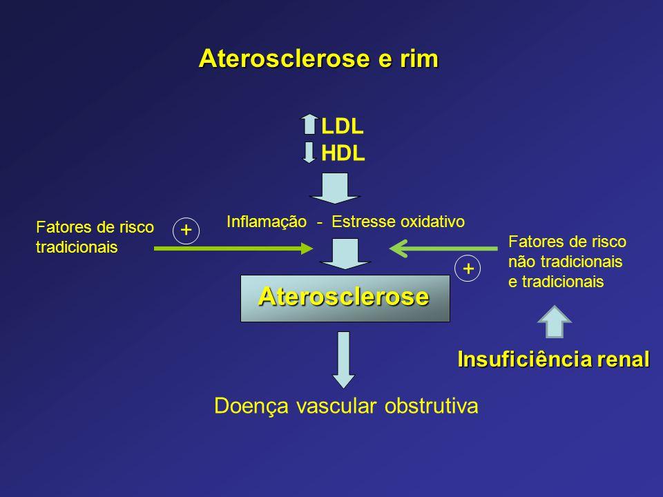 Aterosclerose Inflamação - Estresse oxidativo + + Fatores de risco não tradicionais e tradicionais Fatores de risco tradicionais Aterosclerose e rim D