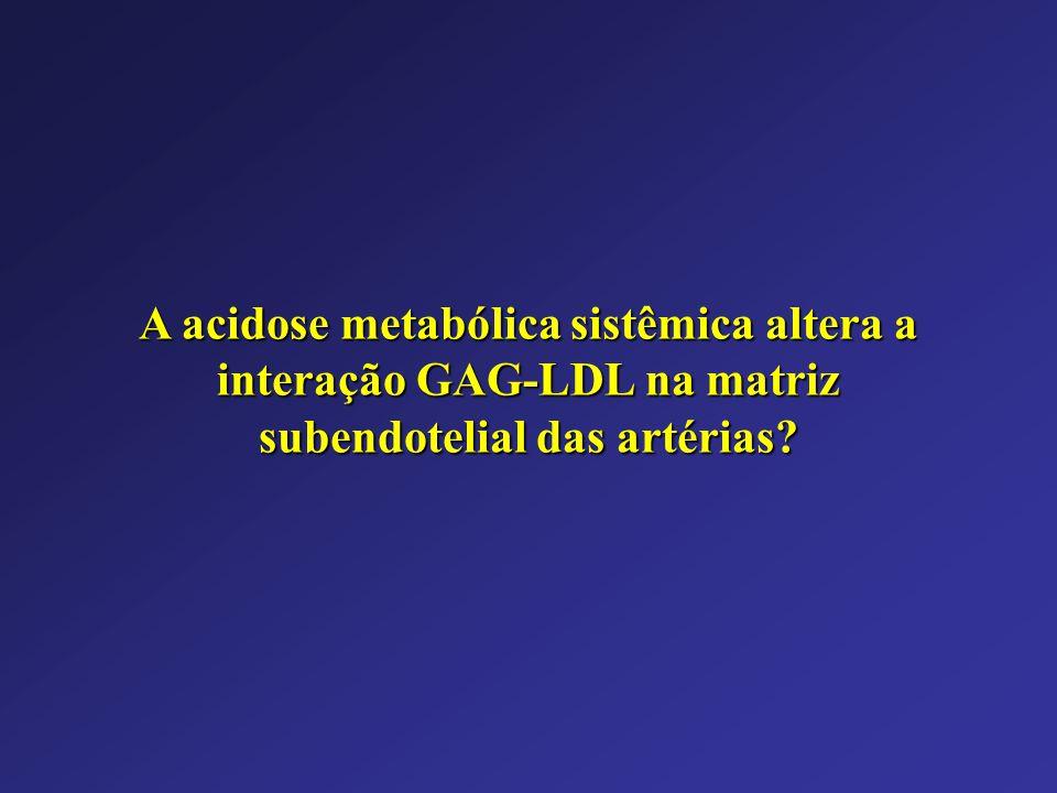 A acidose metabólica sistêmica altera a interação GAG-LDL na matriz subendotelial das artérias?