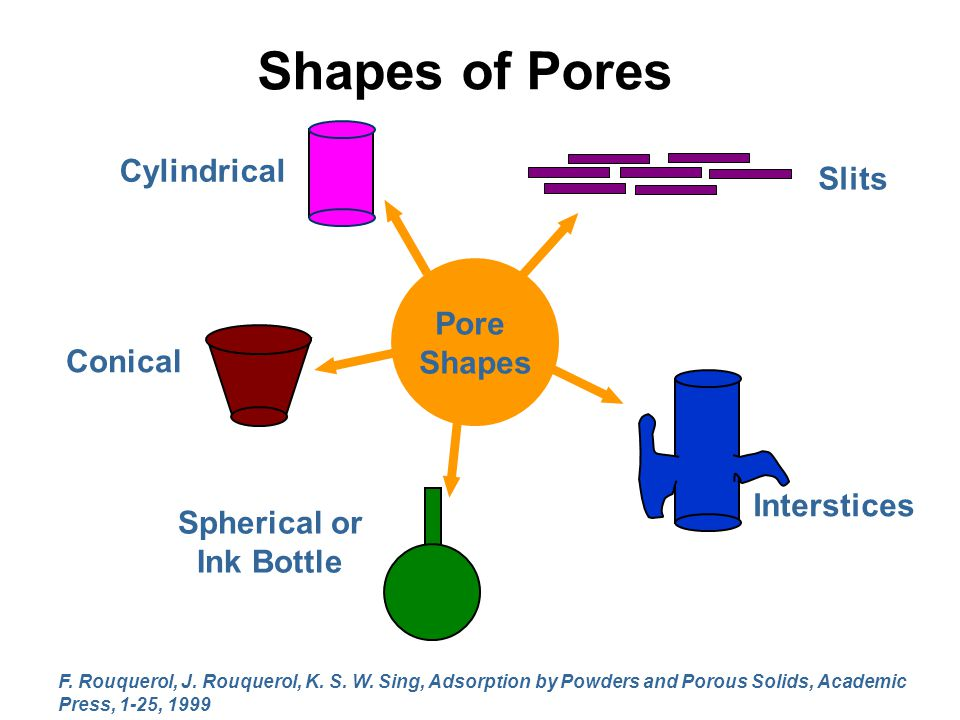 Shapes of Pores Conical Interstices Slits Cylindrical Spherical or Ink Bottle Pore Shapes F. Rouquerol, J. Rouquerol, K. S. W. Sing, Adsorption by Pow