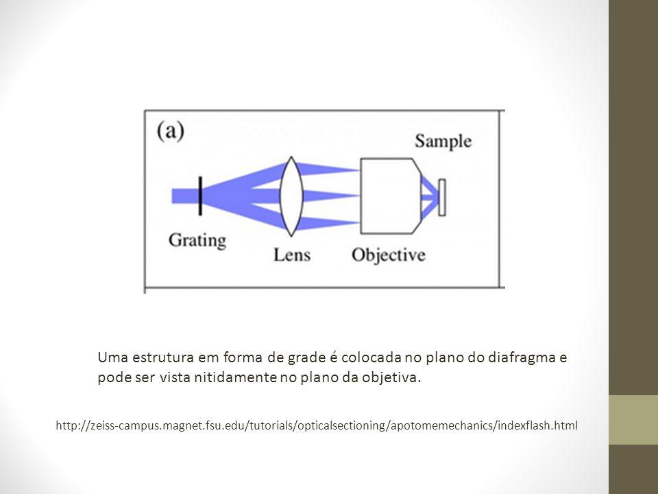 Uma estrutura em forma de grade é colocada no plano do diafragma e pode ser vista nitidamente no plano da objetiva.