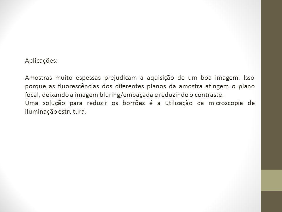 GUSTAFSSON, M.G.L.