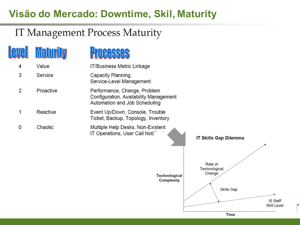 Visão do Mercado: Downtime, Skil, Maturity