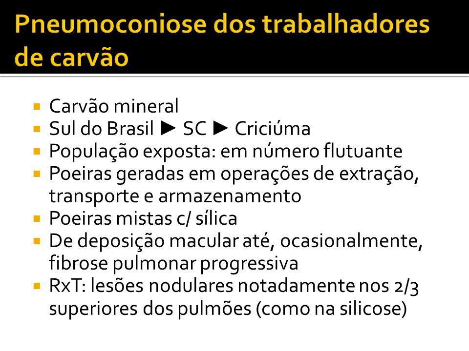  Carvão mineral  Sul do Brasil ► SC ► Criciúma  População exposta: em número flutuante  Poeiras geradas em operações de extração, transporte e arm
