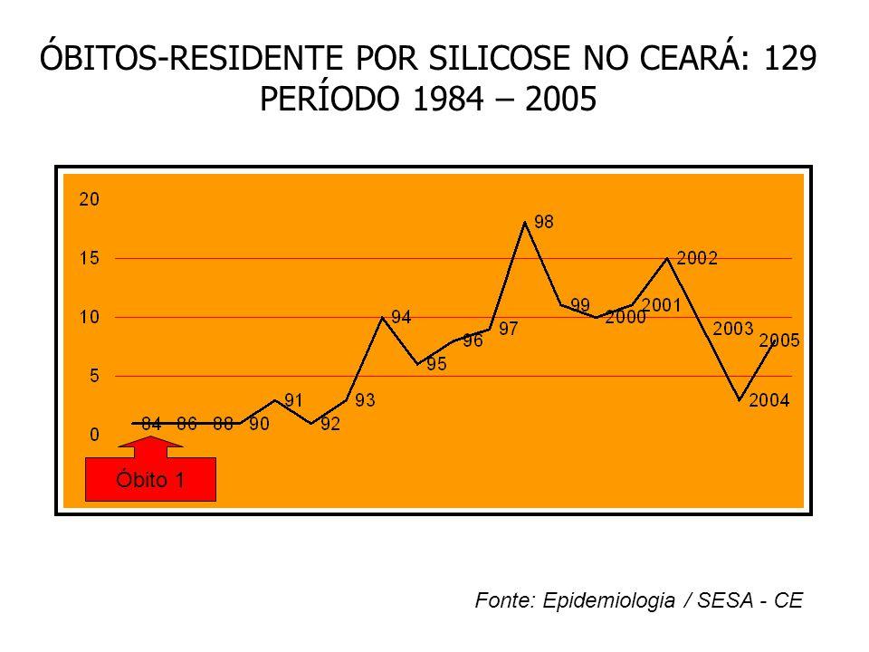 ÓBITOS-RESIDENTE POR SILICOSE NO CEARÁ: 129 PERÍODO 1984 – 2005 Fonte: Epidemiologia / SESA - CE Óbito 1