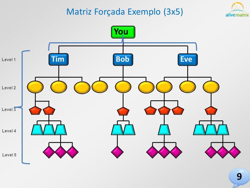 You TimBobEve Matriz Forçada Exemplo (3x5) Level 1 Level 2 Level 3 Level 4 Level 5 9
