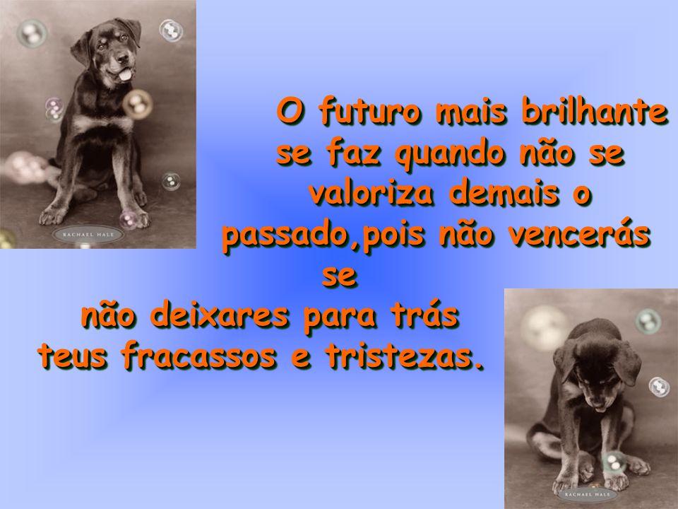 O futuro mais brilhante O futuro mais brilhante se faz quando não se se faz quando não se valoriza demais o valoriza demais o passado,pois não vencerá