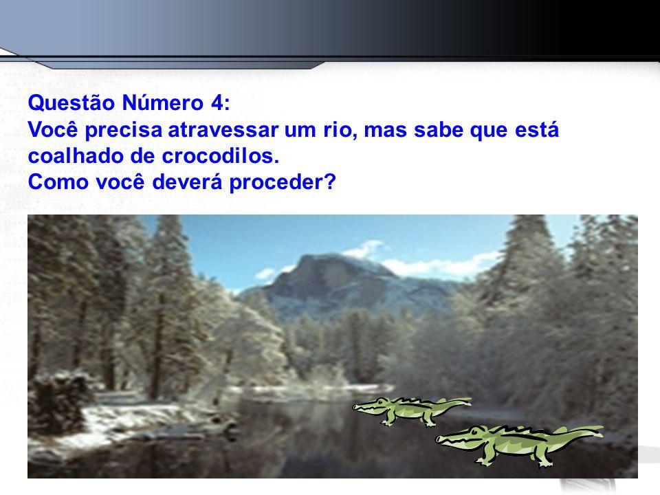 Questão Número 4: Você precisa atravessar um rio, mas sabe que está coalhado de crocodilos. Como você deverá proceder?