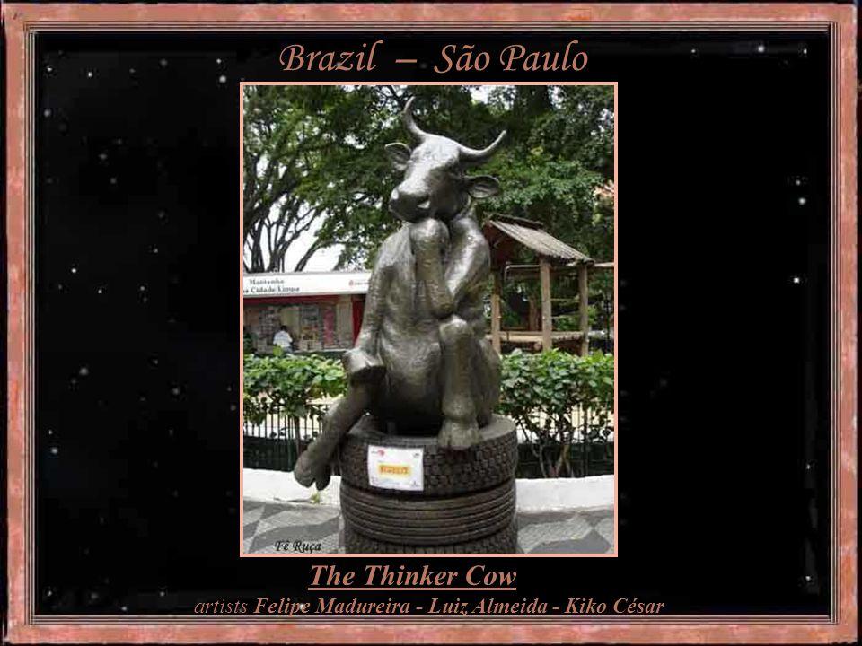 Brazil – São Paulo Got a Cowld - artist Thais Machado