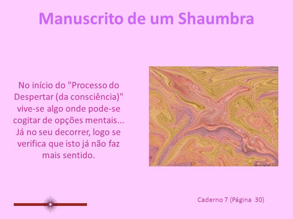 Manuscrito de um Shaumbra Caderno 7 Páginas 30, 31, 32, 35 www.manuscritoshaumbra.com DEZ/08