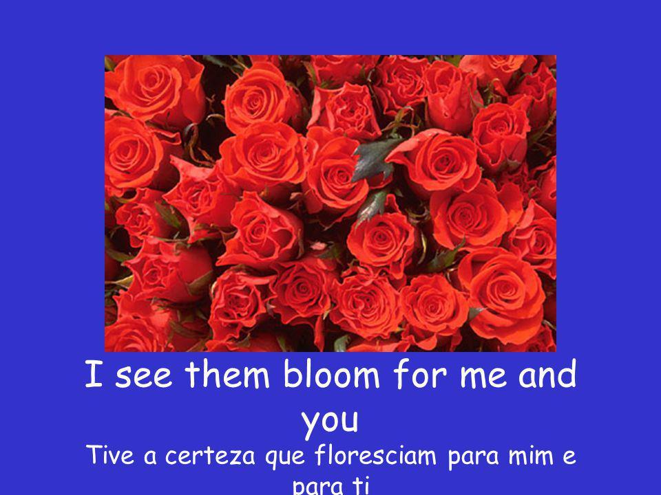 red roses too E também Rosas vermelhas
