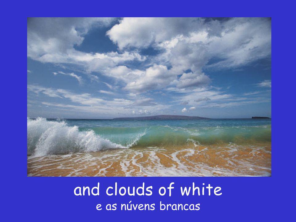 I see skies of blue Vi os céus azúis
