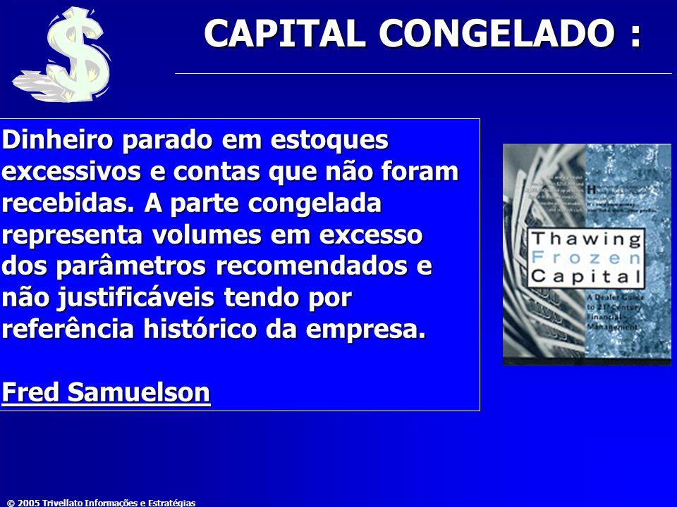 © 2005 Trivellato Informações e Estratégias CAPITAL CONGELADO : Dinheiro parado em estoques excessivos e contas que não foram recebidas. A parte conge