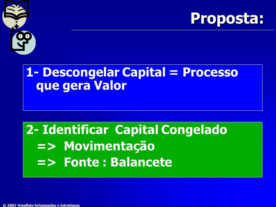 © 2005 Trivellato Informações e Estratégias Proposta: 1- Descongelar Capital = Processo que gera Valor 2- Identificar Capital Congelado => Movimentaçã