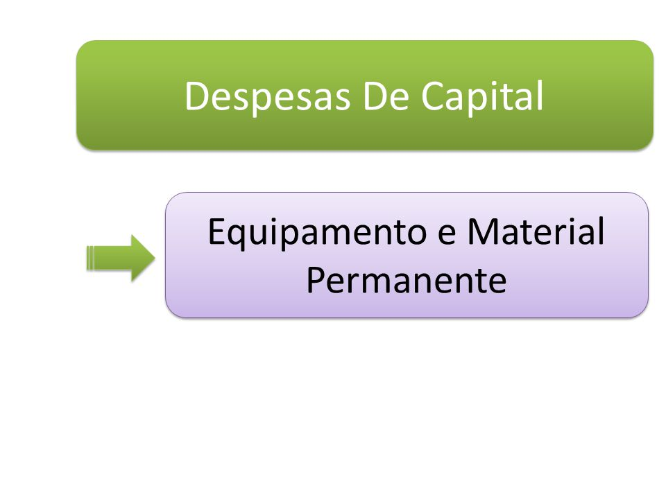Despesas De Capital Equipamento e Material Permanente