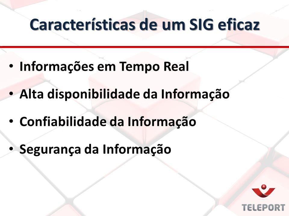 Características de um SIG eficaz Informações em Tempo Real Alta disponibilidade da Informação Confiabilidade da Informação Segurança da Informação