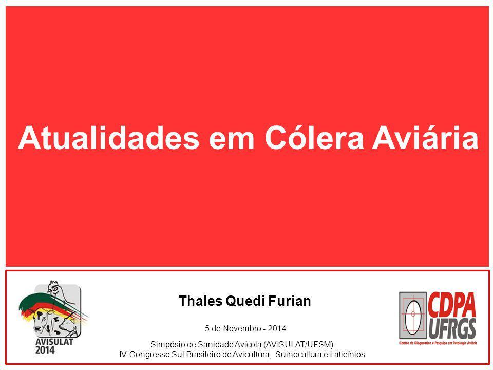 Simpósio de Sanidade Avícola (AVISULAT/UFSM) IV Congresso Sul Brasileiro de Avicultura, Suinocultura e Laticínios Thales Quedi Furian 5 de Novembro -