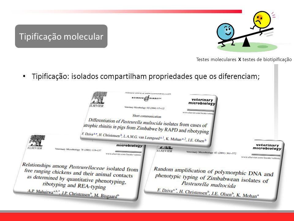 Tipificação molecular Tipificação: isolados compartilham propriedades que os diferenciam; Testes moleculares X testes de biotipificação