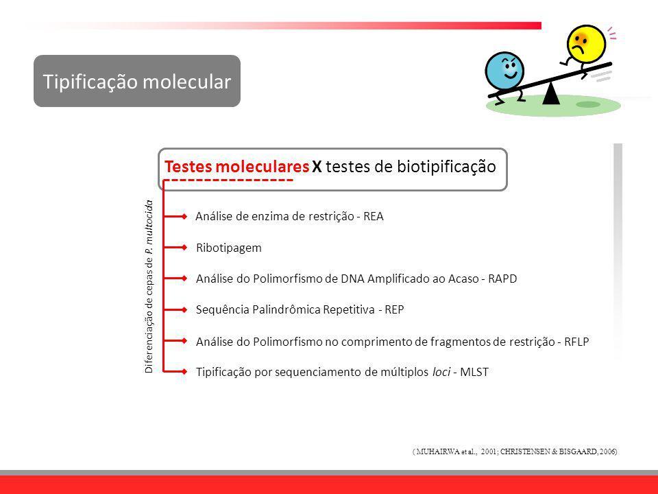 Tipificação molecular ( MUHAIRWA et al., 2001; CHRISTENSEN & BISGAARD, 2006) Testes moleculares X testes de biotipificação Análise de enzima de restri