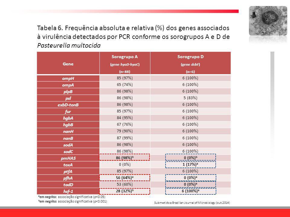 Tabela 6. Frequência absoluta e relativa (%) dos genes associados à virulência detectados por PCR conforme os sorogrupos A e D de Pasteurella multocid