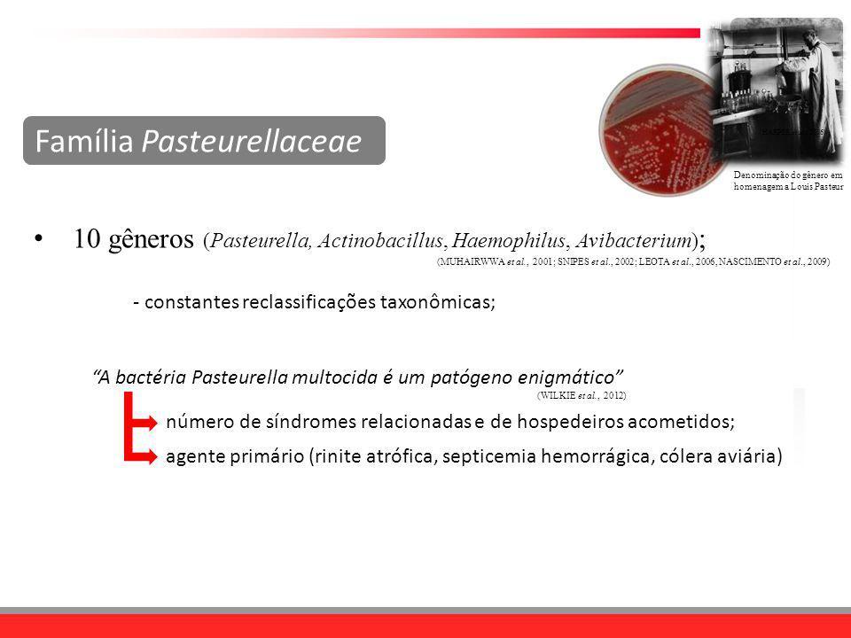 Denominação do gênero em homenagem a Louis Pasteur Família Pasteurellaceae 10 gêneros (Pasteurella, Actinobacillus, Haemophilus, Avibacterium) ; (MUHA