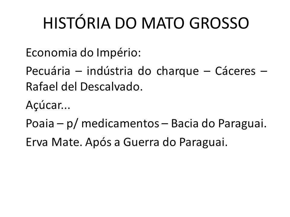 HISTÓRIA DO MATO GROSSO Economia do Império: Pecuária – indústria do charque – Cáceres – Rafael del Descalvado.