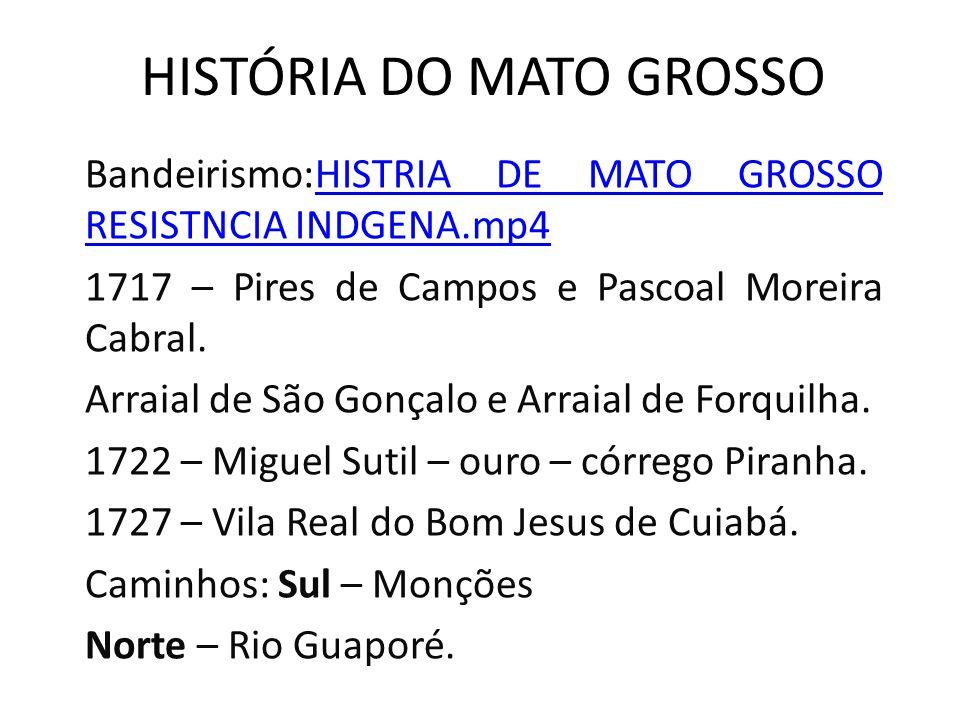 HISTÓRIA DO MATO GROSSO Divisão As ideias divisionistas ganham mais forças graças à ação da Liga Sul Matogrossense.