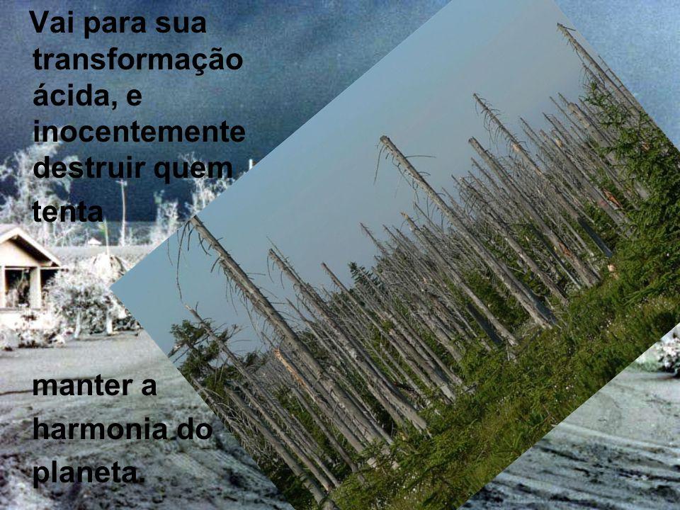 E logo não serão apenas monumentos históricos e árvores a serem consumidos pelas chuvas.