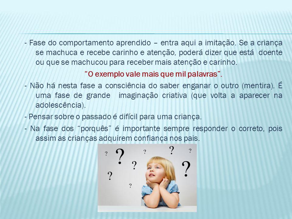 Infância de 5 aos 10 anos - Este período é muito propício para a aprendizagem de novos idiomas e música.