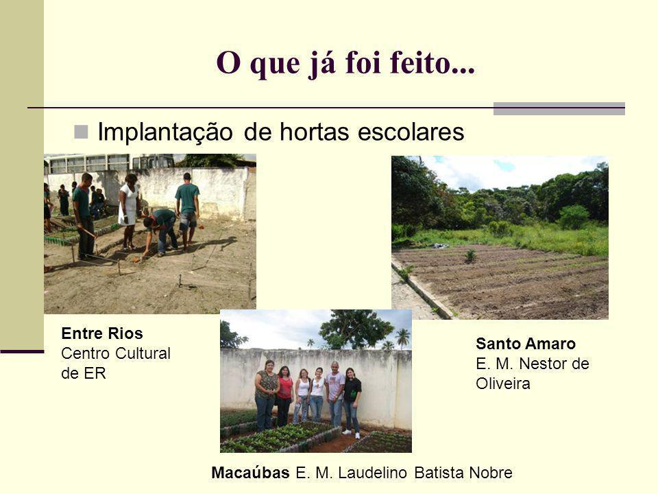 O que já foi feito... Implantação de hortas escolares Entre Rios Centro Cultural de ER Santo Amaro E. M. Nestor de Oliveira Macaúbas E. M. Laudelino B