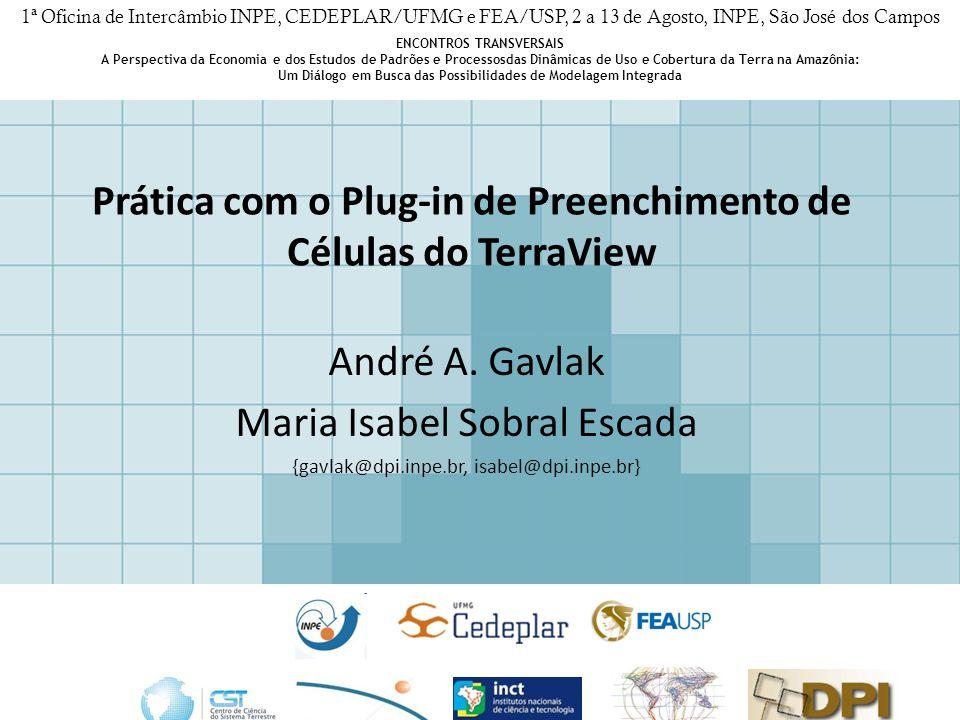 Prática com o Plug-in de Preenchimento de Células do TerraView André A.