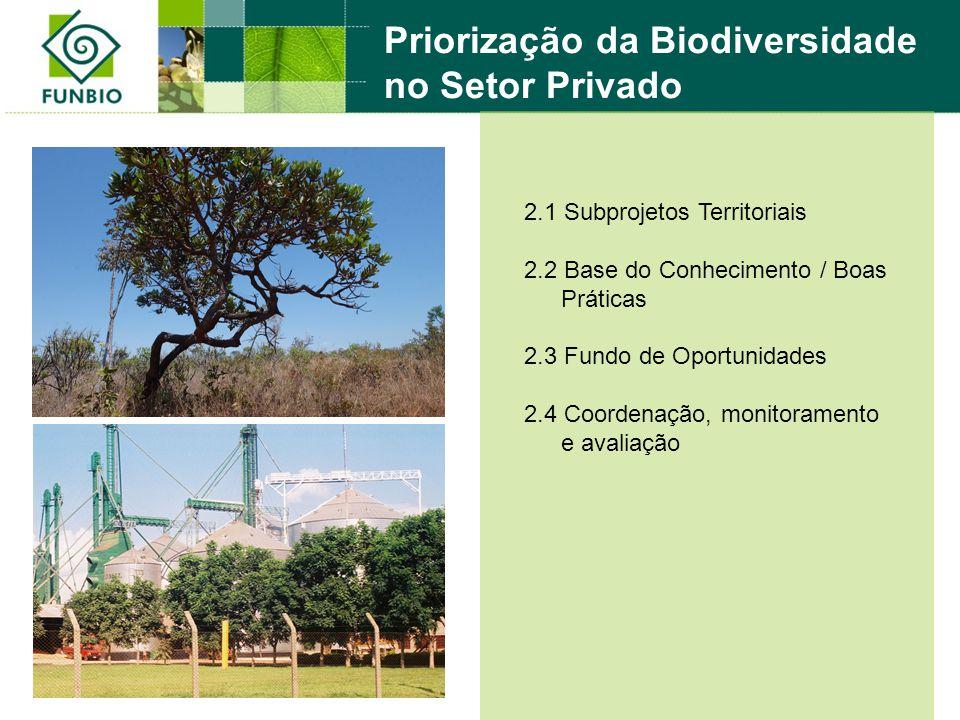 2.1 Subprojetos Territoriais 2.2 Base do Conhecimento / Boas Práticas 2.3 Fundo de Oportunidades 2.4 Coordenação, monitoramento e avaliação Priorizaçã
