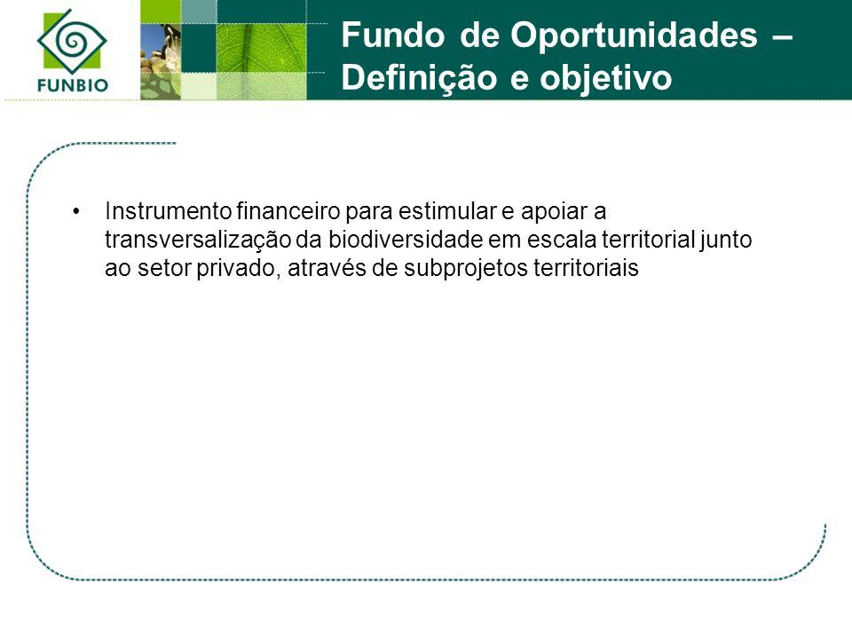 Fundo de Oportunidades – Definição e objetivo Instrumento financeiro para estimular e apoiar a transversalização da biodiversidade em escala territori