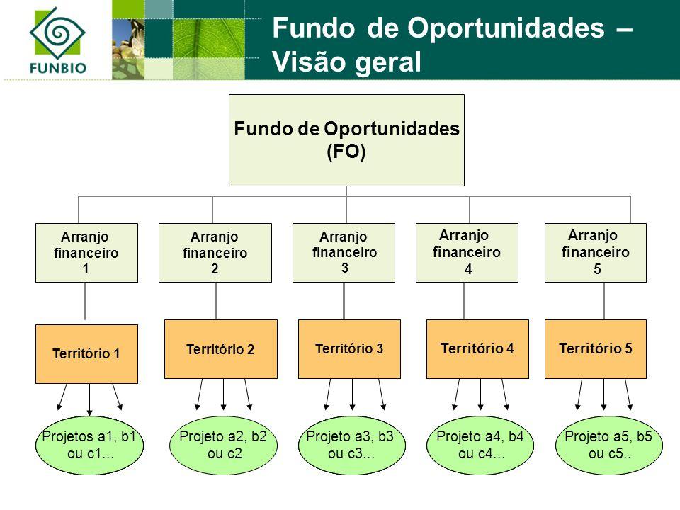 Fundo de Oportunidades (FO) Projetos a1, b1 ou c1 Projeto a3, b3 ou c3 Projeto a4, b4 ou c4 Projeto a5, b5 ou c5 Projeto a2, b2 ou c2 Projetos a1, b1