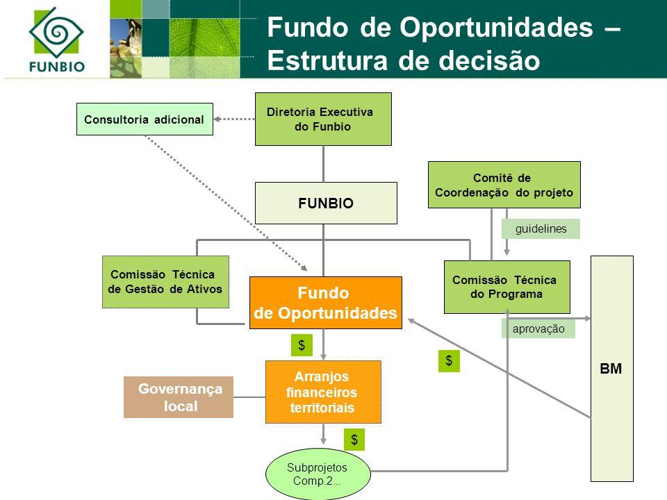 Diretoria Executiva do Funbio Fundo de Oportunidades Comissão Técnica do Programa Consultoria adicional FUNBIO Comissão Técnica de Gestão de Ativos Go