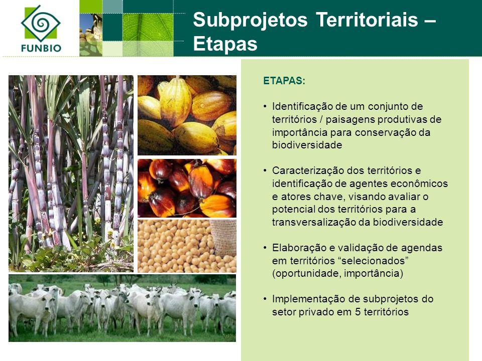 ETAPAS: Identificação de um conjunto de territórios / paisagens produtivas de importância para conservação da biodiversidade Caracterização dos territ