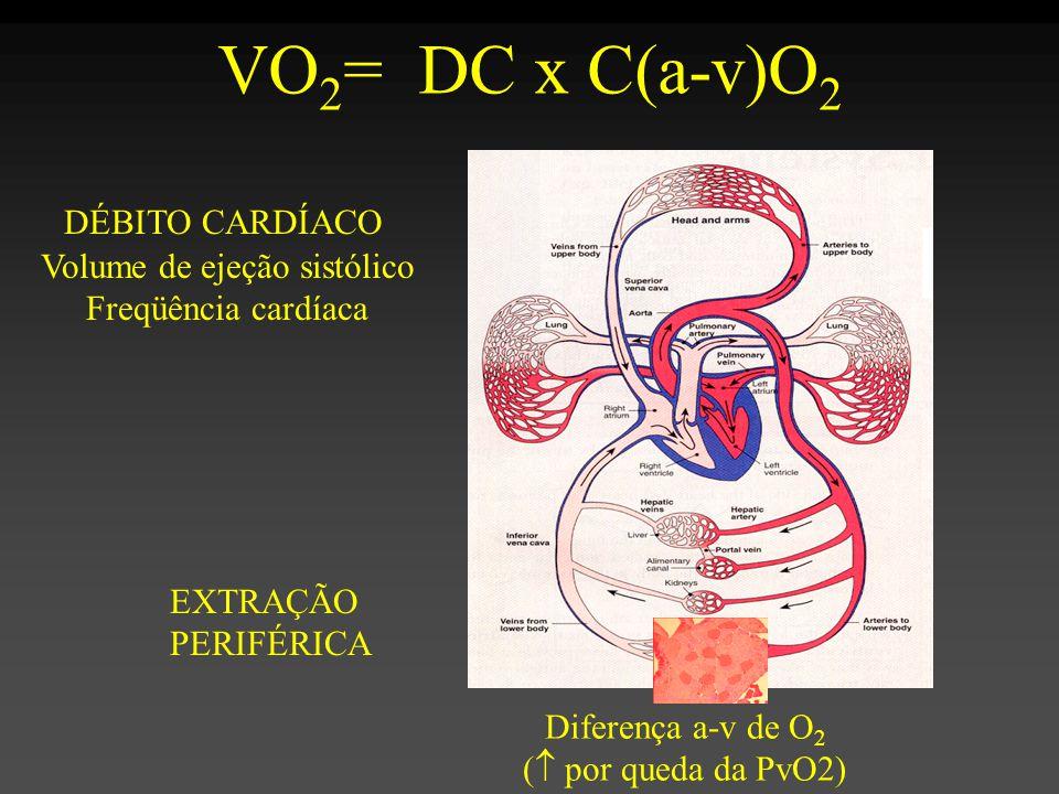 DÉBITO CARDÍACO VO 2 = DC x C(a-v)O 2 EXTRAÇÃO PERIFÉRICA Volume de ejeção sistólico Freqüência cardíaca Diferença a-v de O 2 (  por queda da PvO2)