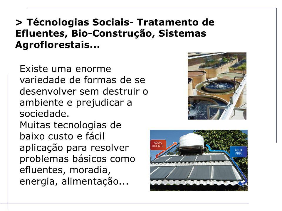 > Técnologias Sociais- Tratamento de Efluentes, Bio-Construção, Sistemas Agroflorestais...