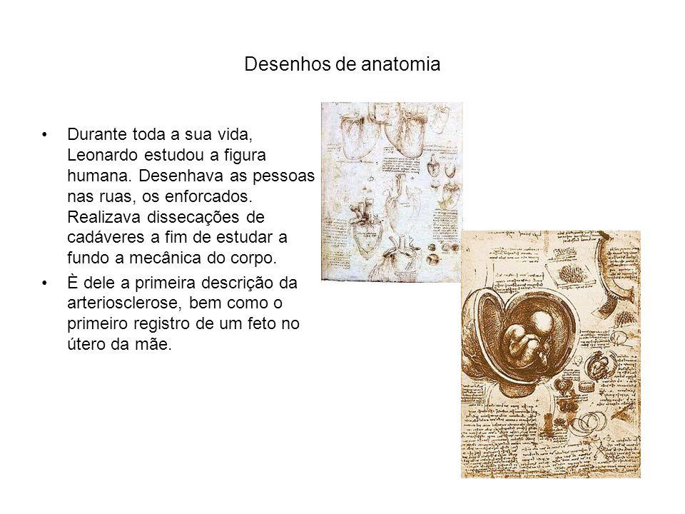 Desenhos de anatomia Durante toda a sua vida, Leonardo estudou a figura humana.
