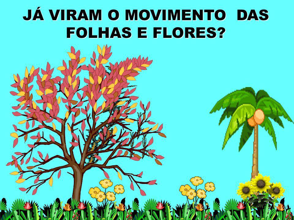 JÁ VIRAM O MOVIMENTO DAS FOLHAS E FLORES?