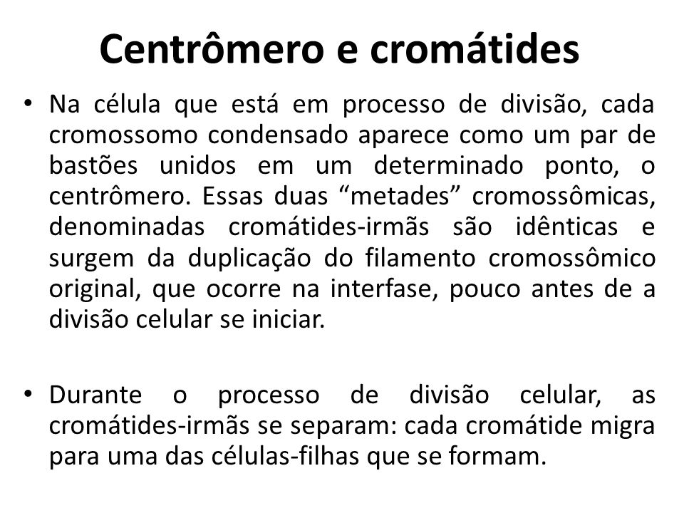 Centrômero e cromátides Na célula que está em processo de divisão, cada cromossomo condensado aparece como um par de bastões unidos em um determinado