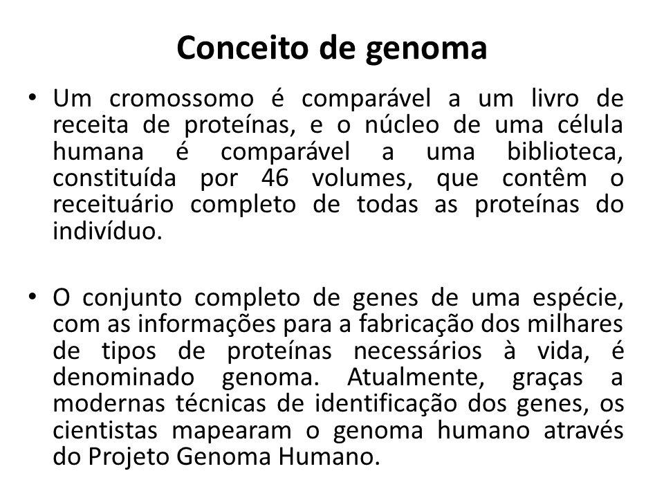 Conceito de genoma Um cromossomo é comparável a um livro de receita de proteínas, e o núcleo de uma célula humana é comparável a uma biblioteca, const