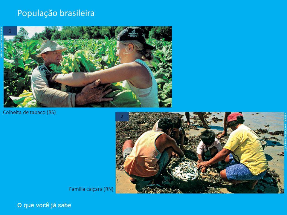 DELFIM MARTINS/PULSAR JUCA MARTINS/OLHAR IMAGEM O que você já sabe População brasileira Colheita de tabaco (RS) Família caiçara (RN) 1 2