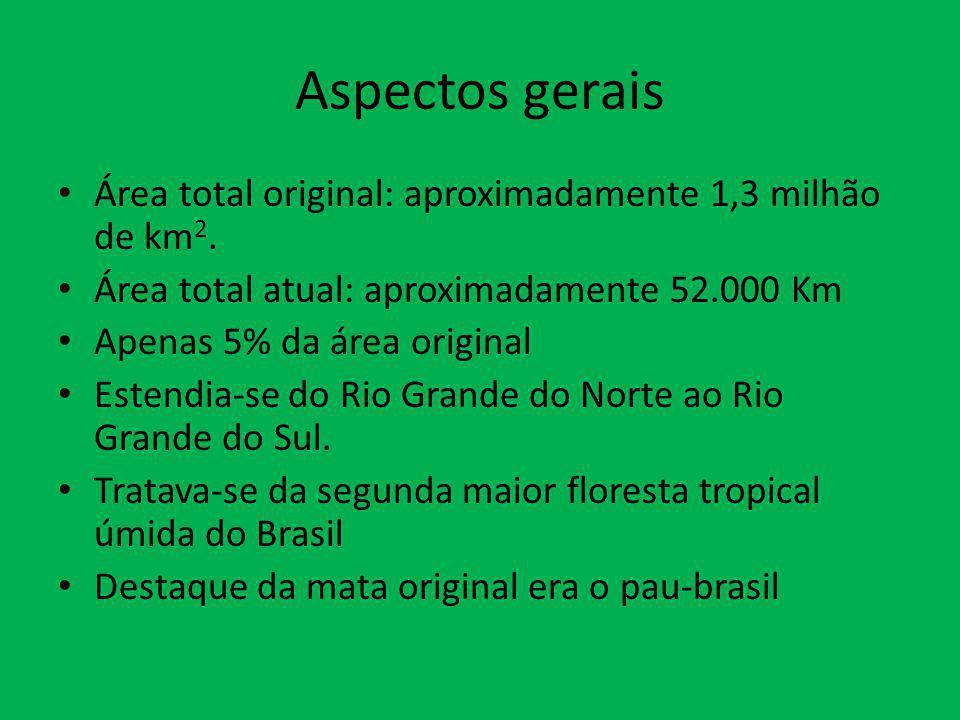 Aspectos gerais Área total original: aproximadamente 1,3 milhão de km 2. Área total atual: aproximadamente 52.000 Km Apenas 5% da área original Estend