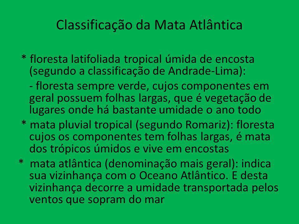 Classificação da Mata Atlântica * floresta latifoliada tropical úmida de encosta (segundo a classificação de Andrade-Lima): - floresta sempre verde, c