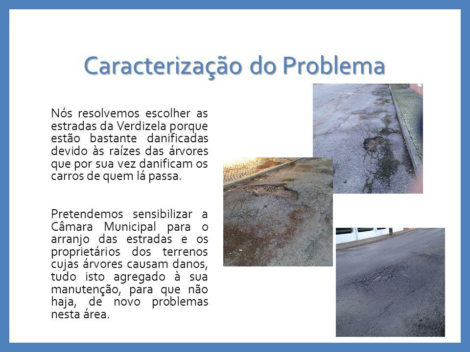 Caracterização do Problema Nós resolvemos escolher as estradas da Verdizela porque estão bastante danificadas devido às raízes das árvores que por sua vez danificam os carros de quem lá passa.