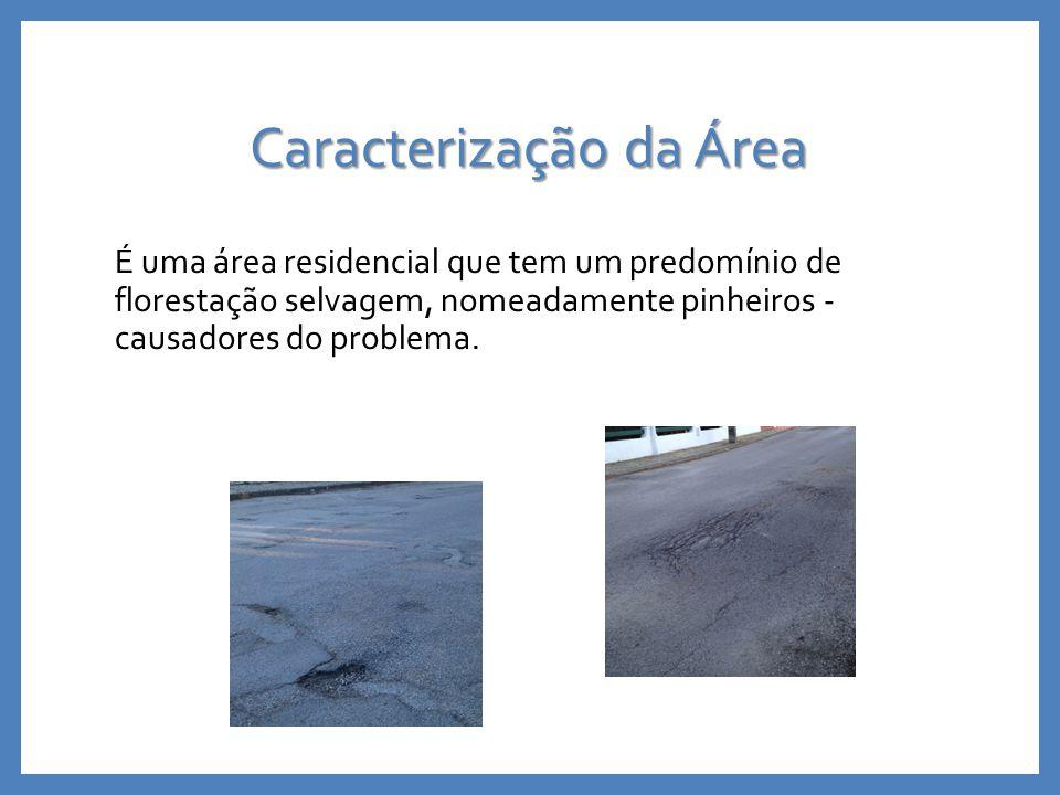 Caracterização da Área É uma área residencial que tem um predomínio de florestação selvagem, nomeadamente pinheiros - causadores do problema.