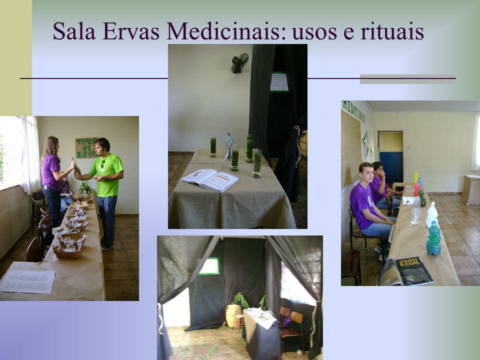 Sala Ervas Medicinais: usos e rituais