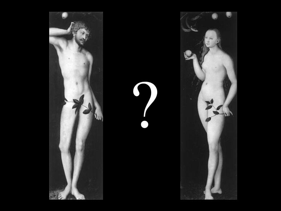 ORIGEM, EVOLUÇÃO, TIRADAS FILOSÓFICAS E OUTRAS CHATEAÇÕES Qualquer que seja a doutrina cosmogônica, posição filosófica, prisma religioso ou hipótese adotada pelo estudioso, reconhece-se que o chato surgiu com o aparecimento do ser vivo, e que o ser que tomou consciência do chato foi o homem (e a mulher).