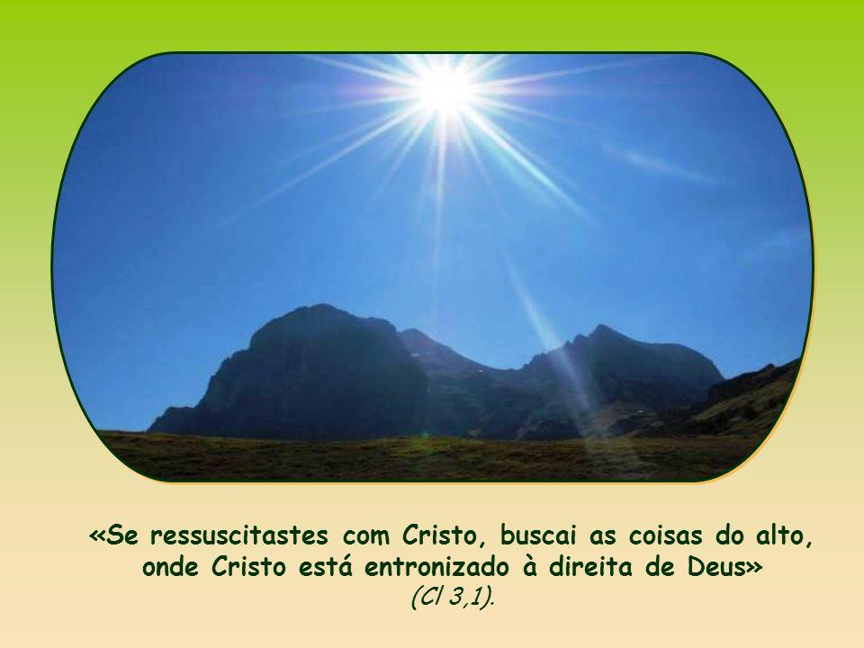 «Se ressuscitastes com Cristo, buscai as coisas do alto, onde Cristo está entronizado à direita de Deus» (Cl 3,1).